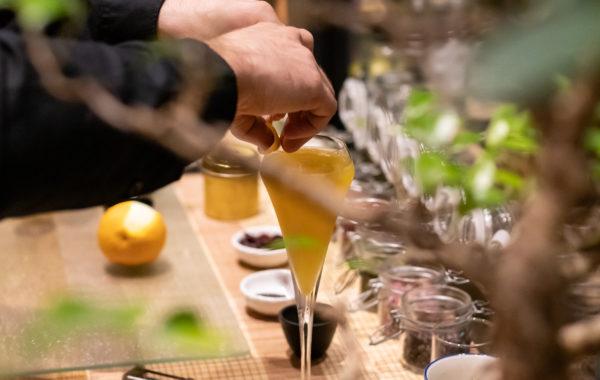 cocktail réception hôtel des quinconces
